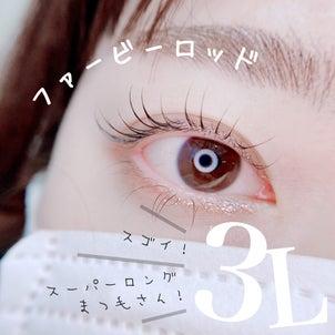 ファービーロッド3L★の画像