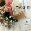 花に癒やしを求めてみました!【PR】〜花の定期便〜の画像