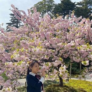 日本庭園は好きですか?の画像