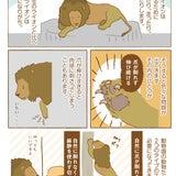 大牟田市動物園!!ライオンの予習の記事画像