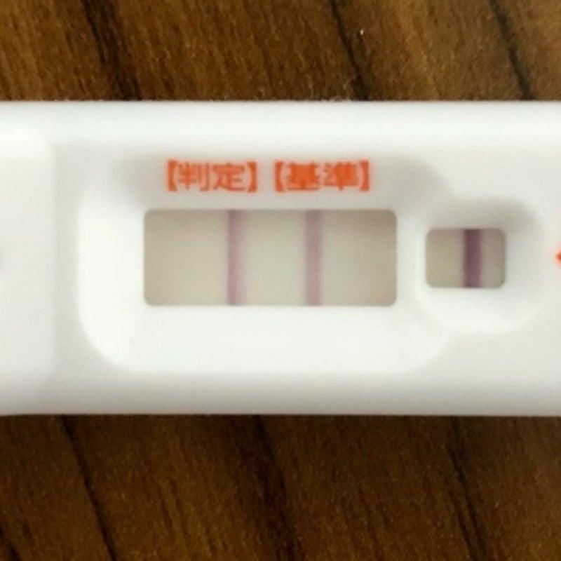 妊娠検査薬 高温期10日目 高温期10日目でフライングはどうなる?妊娠兆候は現れる?