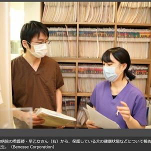 ボランティアを支える獣医師(いぬのきもち)の画像