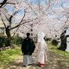 弘前公園 ウェディング⭐︎ロケーション撮影⭐︎の画像