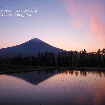 田んぼに水が入りました♪ 富士山、昨日の朝。