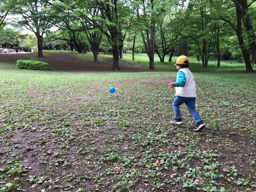 朝の代々木公園