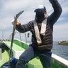 昨日4/24(土)タチウオ釣果の画像