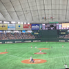 東京ドームのジャイアンツ 見納めの画像