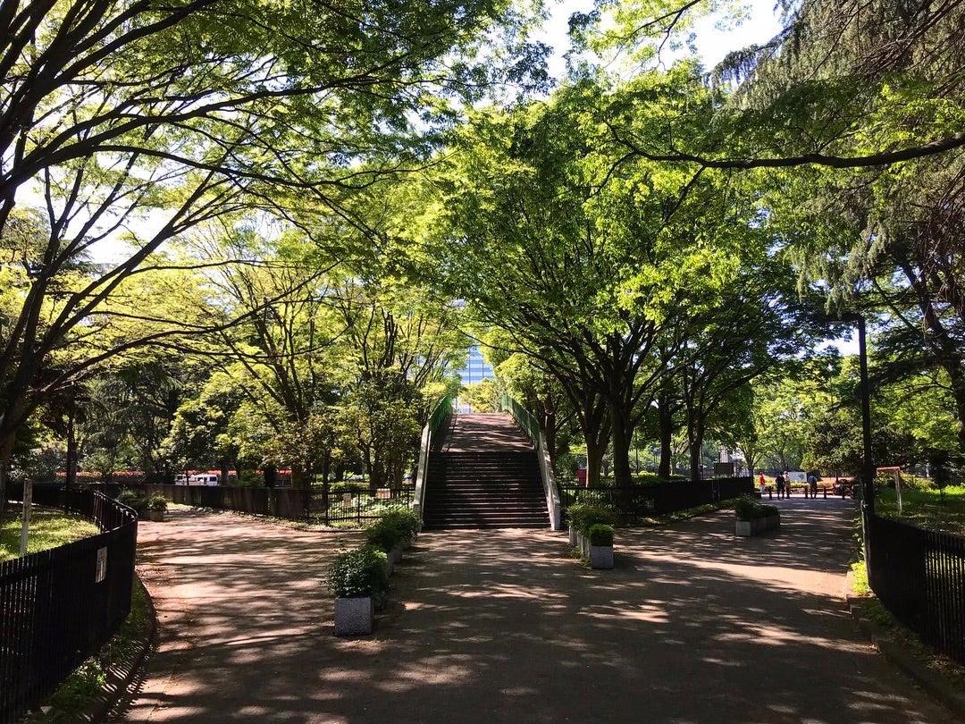 代々木公園の歩道橋