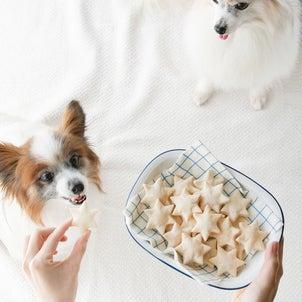 加熱OKの魚油粉末で、犬用クッキーを作ってみましたの画像