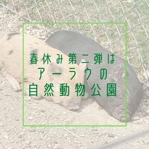 春休み第2弾、無料で楽しめるアーラウの自然動物公園の画像