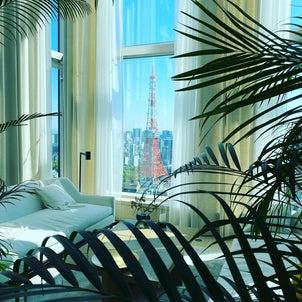 グリーンが生い茂った都会のオアシスで最上のひとときの画像