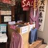 好評『のみの市』 ありがとうございます! 鎌倉店の画像
