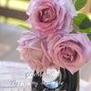 花を咲かせる理由の画像