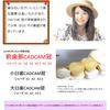 保険CAD/CAM冠の画像