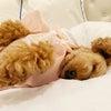 添い寝の画像
