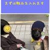 4/28 福島区海老江【かすみ】の日記。の画像
