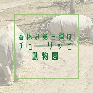 春休み第3弾は、サファリがみたい!チューリッヒ動物園の画像