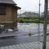 嵐が来る!!の画像