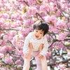 【出張撮影】桜との思い出たちの画像