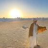 白砂漠でアチューメントの画像
