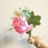 今週のサブスク《ピンク系》の画像