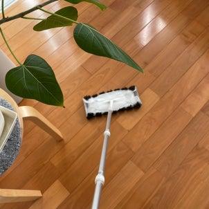 【お掃除嫌いな方へ】私の掃除が続くワケの画像