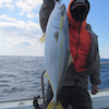 5月2日の釣果の画像