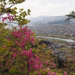 画像 4/30~5/1 新潟① 花盛りの坂戸山 の記事より 23つ目