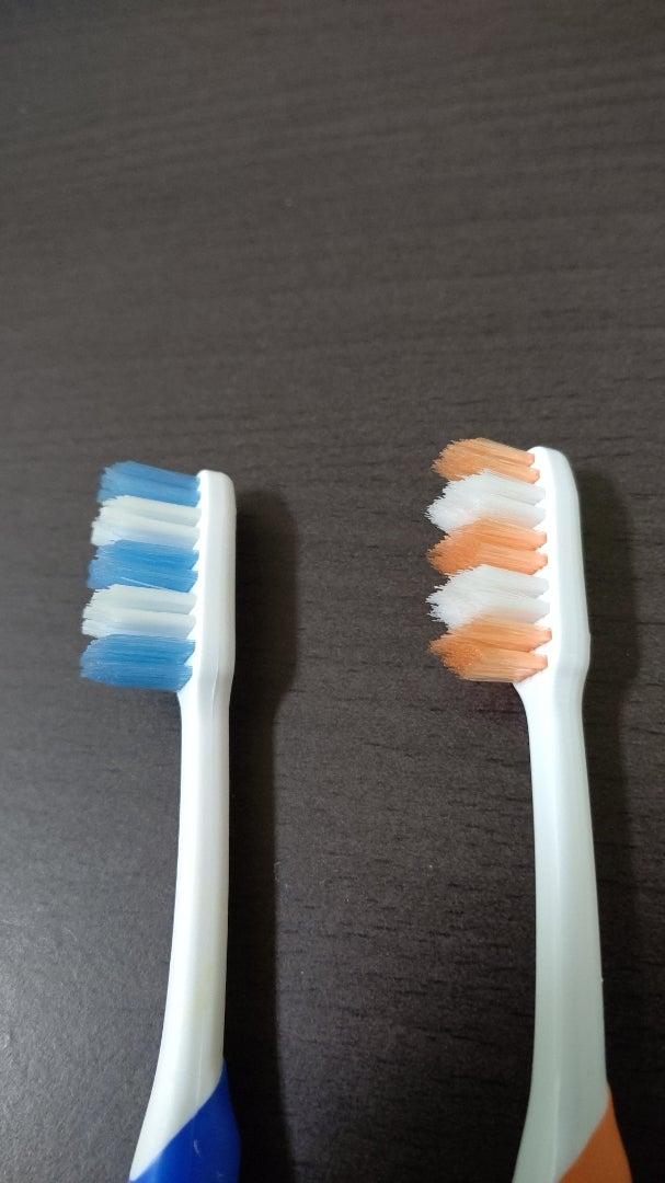 歯科医のブラッシング
