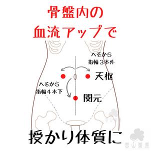 妊活は骨盤内の血流アップをの画像