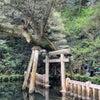 【占い】東国三社代理祈願☆鹿島神宮奥宮での不思議体験と龍がついている人の特徴の画像