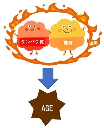 AGE・終末酸化産物