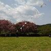 気仙沼もうもうらんど、新凧揚げ会場の画像