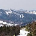 高速滑走スキーヤー's ブログ