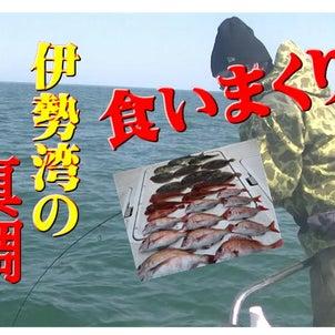 高活性な伊勢湾動画&料理男子の画像