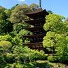 国宝・山口瑠璃光寺五重塔に行って来ました。の画像
