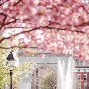 春から夏へとの画像