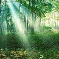 0意識研究所ブログ。0意識ヒーラー体験談。エネルギーをクリア、浄化してこころもカラダも健康になる。
