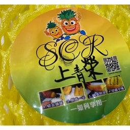画像 台湾パイナップル の記事より 7つ目