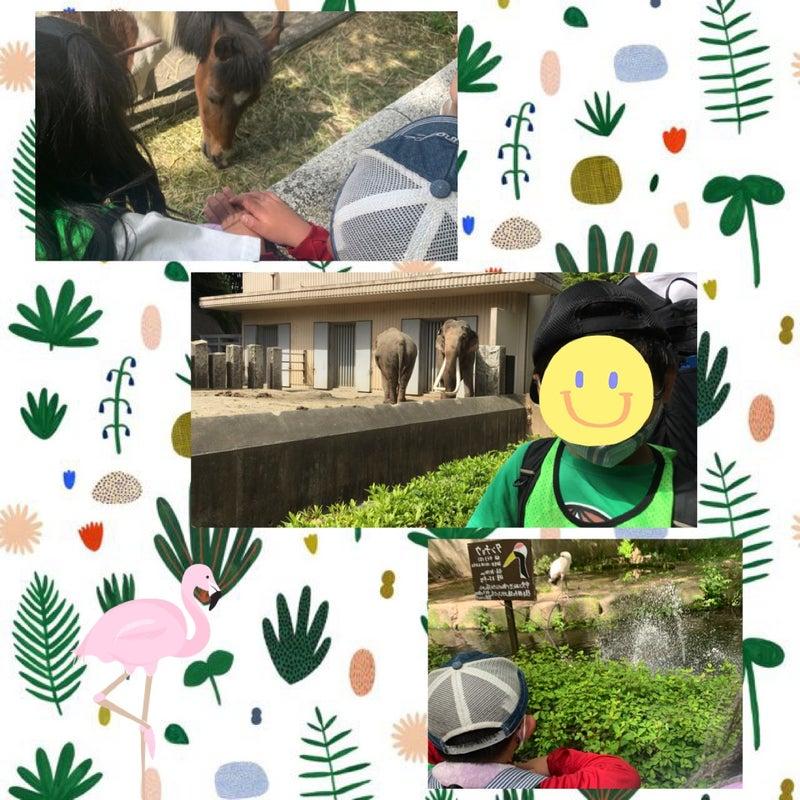 o1065106514937811822 - ☆5月4日(火)toiro西谷☆