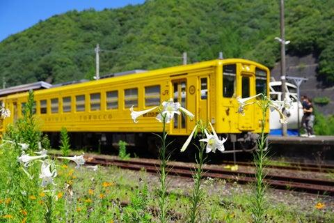 江川崎駅825
