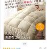 丸洗い出来る布団セット送料込み2980円の画像