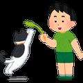 kazegafukeba1107のブログ