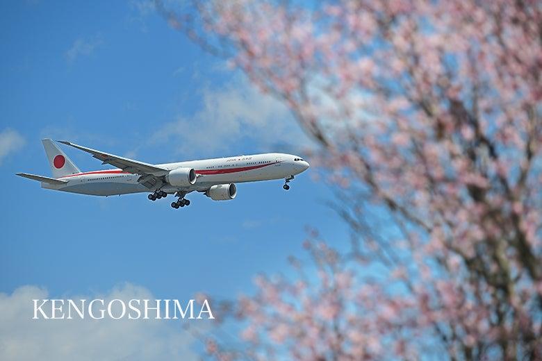 桜 政府専用機 日本国政府専用機 B777 KEN五島