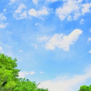 心地いい気候で屋外撮影今のうちにの画像