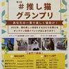 """明後日まで!""""#推し猫グランプリ 猫カフェ部門にエントリー""""の画像"""