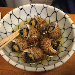 画像 渋谷区神泉の日本酒専門店・酒とさか菜 の記事より 2つ目