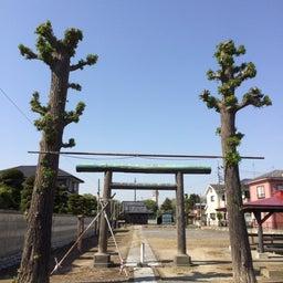 画像 埼玉県越谷市で風水鑑定と神社参拝 の記事より 4つ目