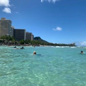 妄想ハワイとKALDIのハリッサにハマるの画像