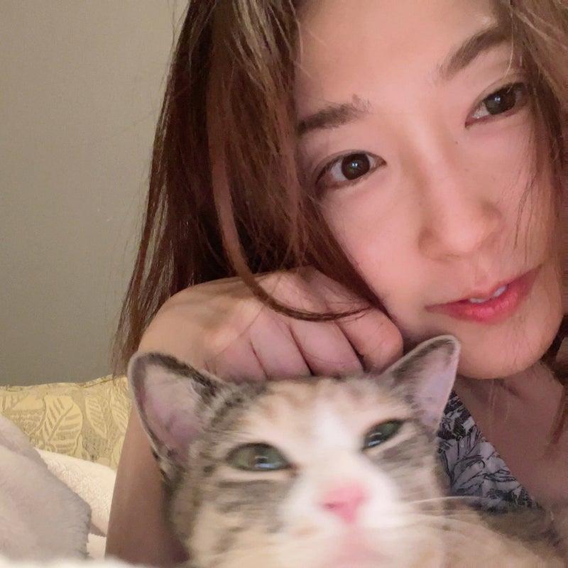 ちゃん ブログ ドキン バタコさんのブログに読者が涙「ドキンちゃんに愛をこめて」